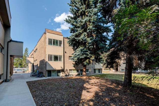 8235 Elbow Drive SW #224, Calgary, AB T2V 1K6 (#A1021201) :: Canmore & Banff