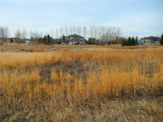 244102 Partridge Place W, Rural Rocky View County, AB T3P 0R3 (#C4210235) :: The Cliff Stevenson Group