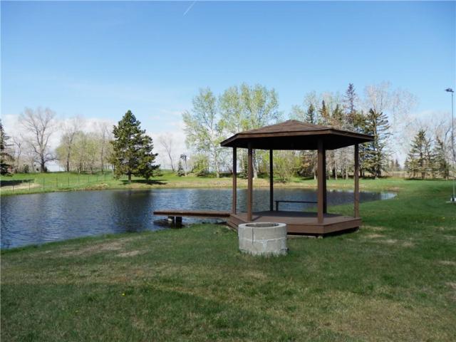 71 Prairie Schooner Estates, Rural Rocky View County, AB T1X 0J8 (#C4225172) :: The Cliff Stevenson Group
