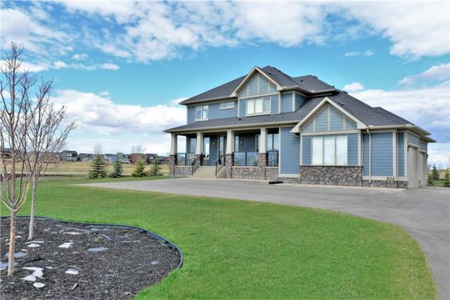 202 Green Haven Court, Rural Foothills County, AB T1S 0L9 (#C4229583) :: The Cliff Stevenson Group