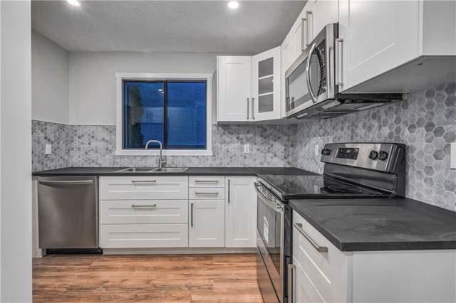 442 Templeview Drive NE, Calgary, AB T1Y 4L2 (#C4267628) :: Redline Real Estate Group Inc