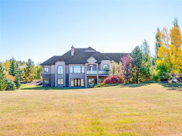 31161 Woodland Way, Rural Rocky View County, AB T3R 1G8 (#C4202819) :: The Cliff Stevenson Group