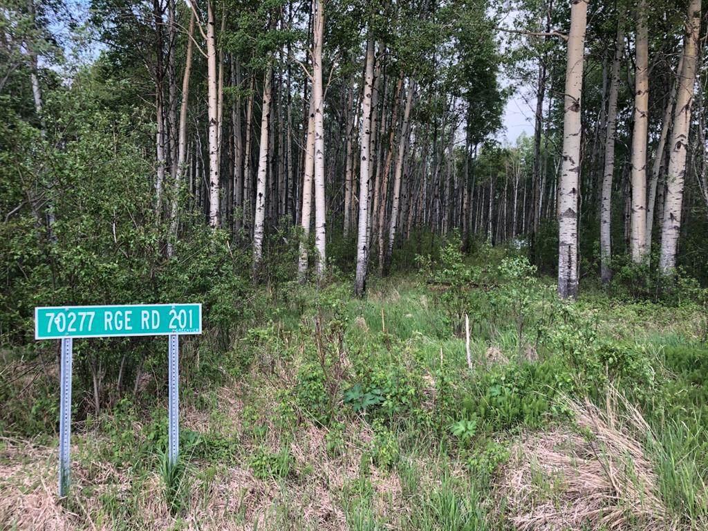 70277 Range Road 201 Road - Photo 1