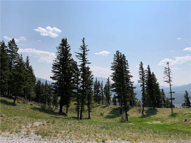 39 Kananaskis Way, Rural Crowsnest Pass, AB T0K 0M0 (#A1006262) :: Canmore & Banff
