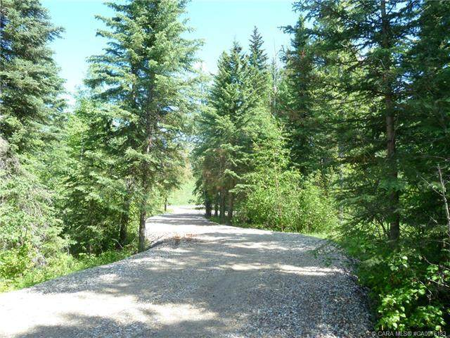 6 Ridgeland Road, Rural Clearwater County, AB T4T 2A4 (#A1008126) :: Canmore & Banff