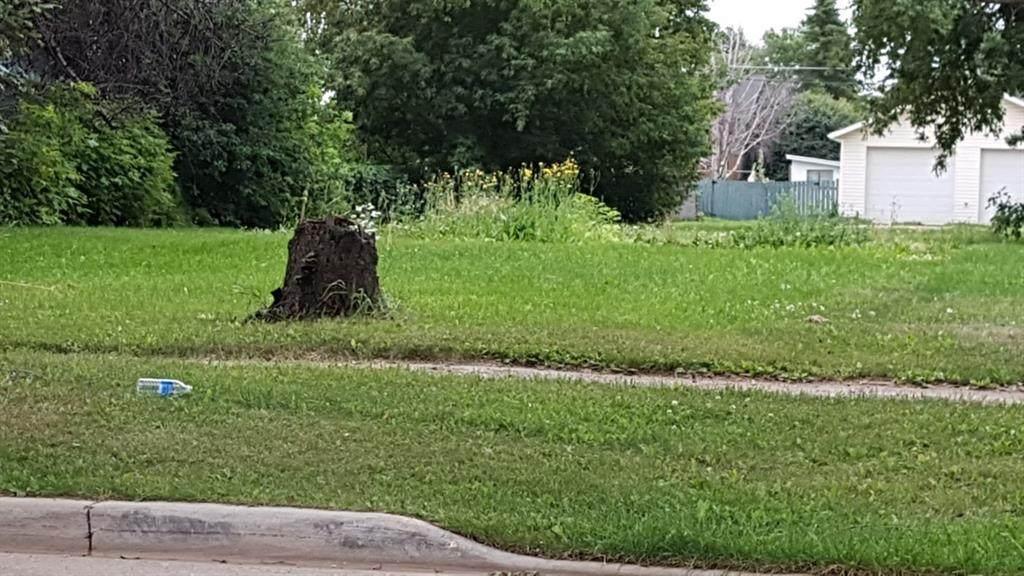 4929-57 ave High Prairie Street - Photo 1
