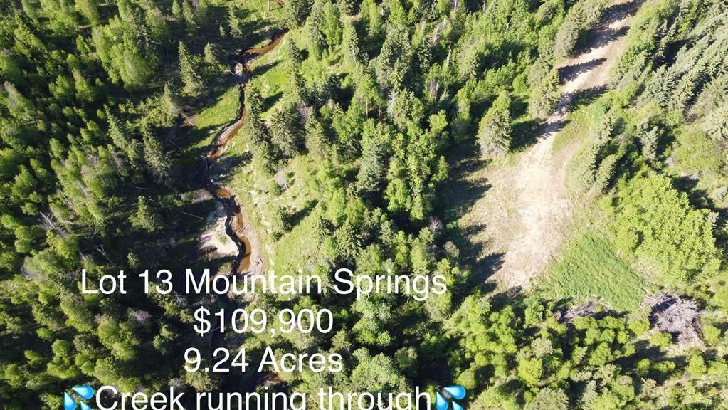 Lot 13 Mountain Springs Subdv. - Photo 1