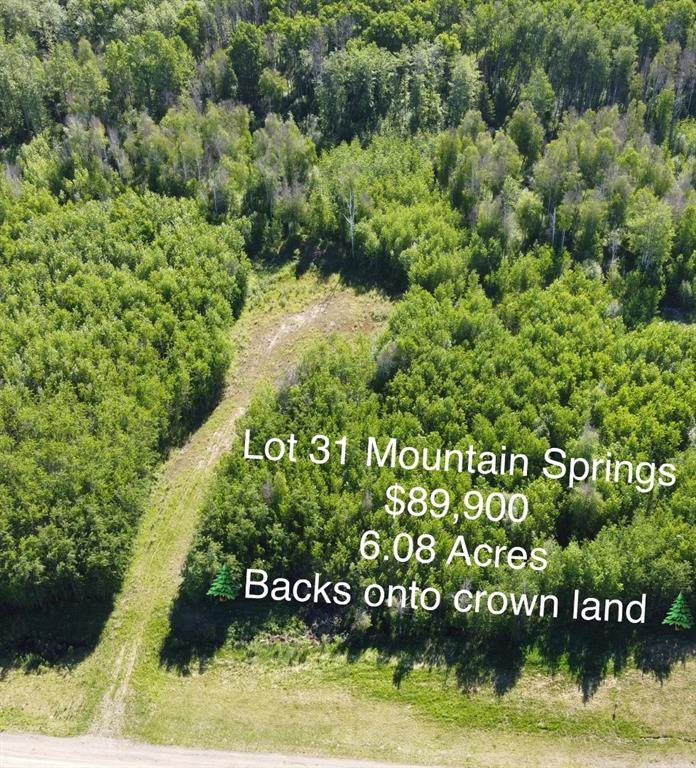 Lot 31 Mountain Springs Subdv. - Photo 1