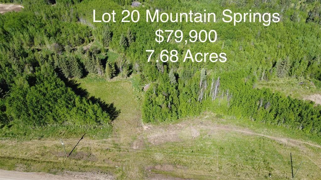 Lot 20 Mountain Springs Subdv. - Photo 1