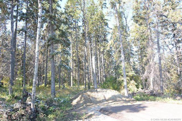 27475 Township Road 380 #296, Rural Red Deer County, AB T4S 2B7 (#A1038408) :: Canmore & Banff