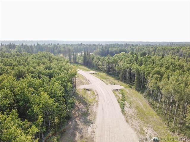 #61, 704016 Range Road 70, Rural Grande Prairie No. 1, County of, AB T0H 3V0 (#A1059182) :: Redline Real Estate Group Inc