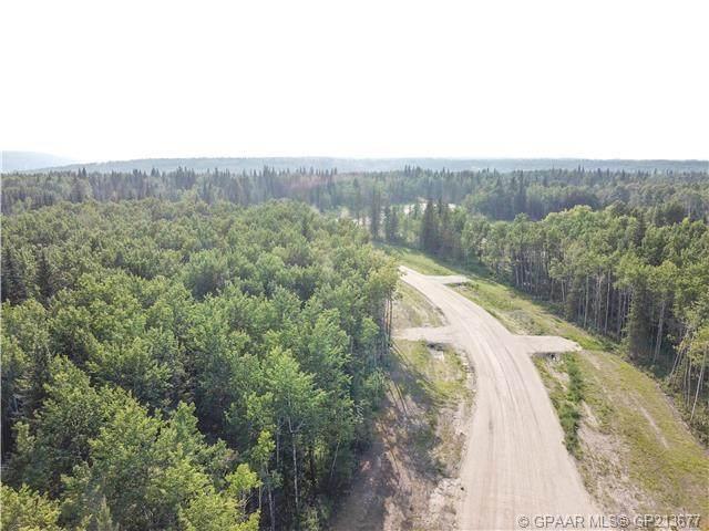 #49, 704016 Range Road 70, Rural Grande Prairie No. 1, County of, AB T0H 3V0 (#A1059183) :: Redline Real Estate Group Inc