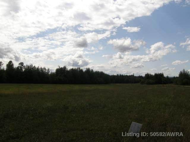 51 Swan Valley Estates - Photo 1