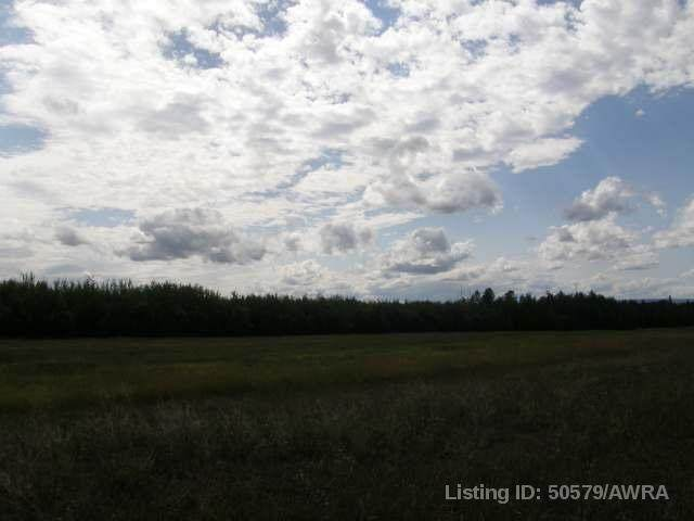 53 Swan Valley Estates - Photo 1