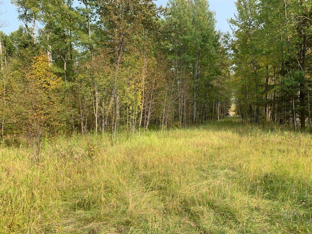 ON Township Road 452 - Photo 1