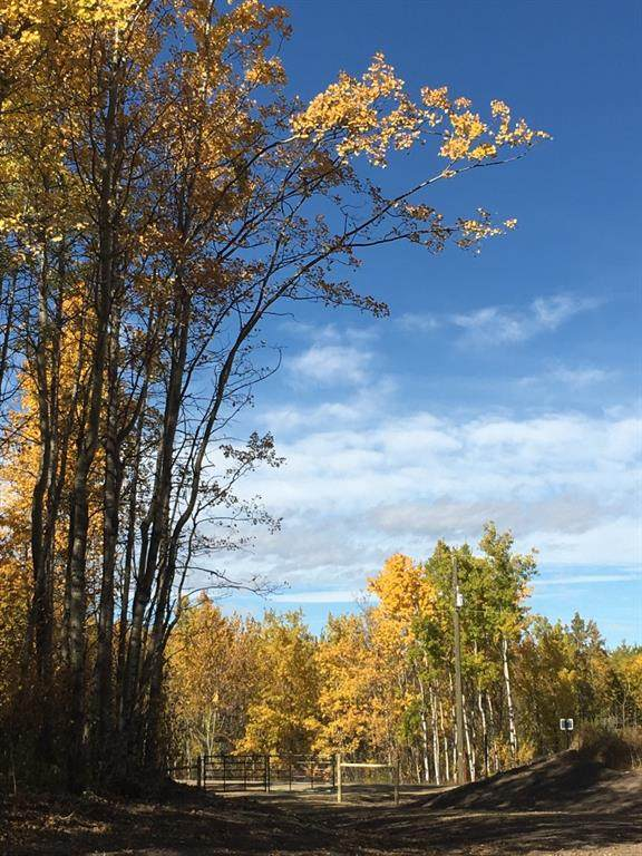 On Range Road 14A, Rural Ponoka County, AB T0C 2J0 (#A1072468) :: Calgary Homefinders