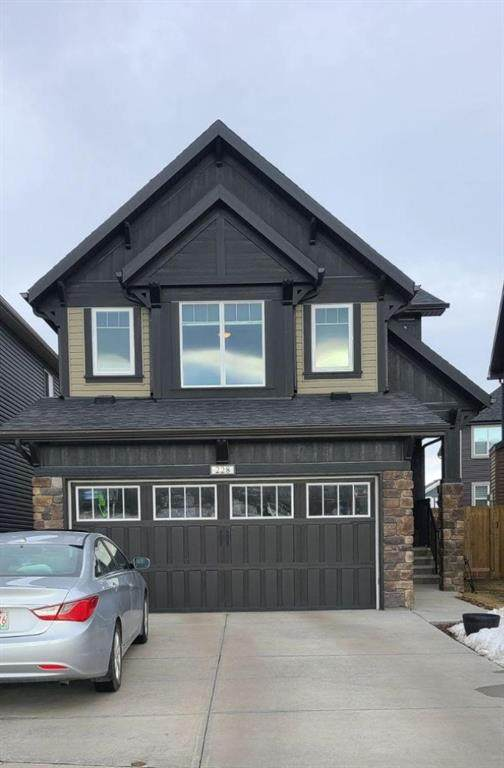 228 Paint Horse Drive, Cochrane, AB T4C 0X1 (#A1076408) :: Redline Real Estate Group Inc