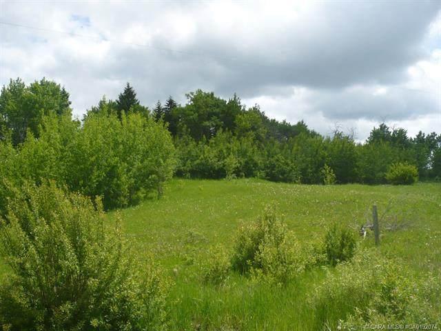 421027 Range Road 20, Rural Ponoka County, AB T0C 2J0 (#A1085024) :: Western Elite Real Estate Group