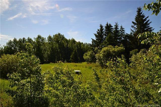 30 Creek Road, Rural Ponoka County, AB T4J 1R3 (#A1085942) :: Calgary Homefinders