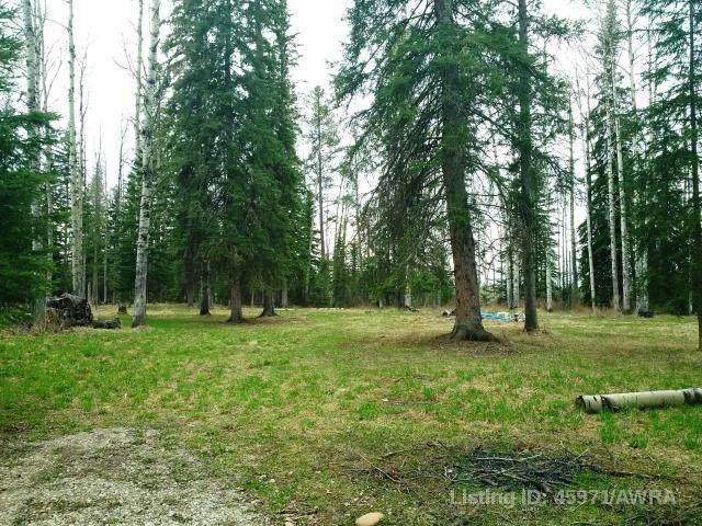 10B River Ridge Estates, Rural Yellowhead, AB 78747 (#AW45971) :: Western Elite Real Estate Group