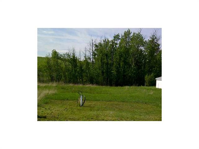 63 Buffalo Lane, Rural Stettler County, AB T0C 2L0 (#C4059175) :: Redline Real Estate Group Inc