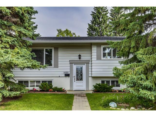 1020 120 Avenue SE, Calgary, AB T2J 2K9 (#C4124782) :: Tonkinson Real Estate Team