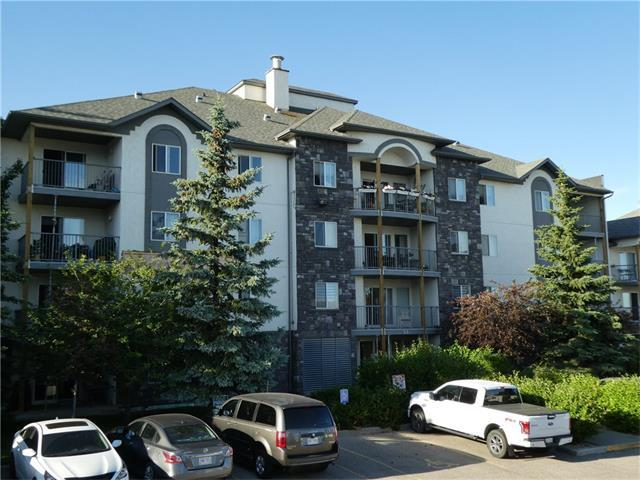 55 Arbour Grove Close NW #207, Calgary, AB T3G 4K3 (#C4125149) :: Tonkinson Real Estate Team