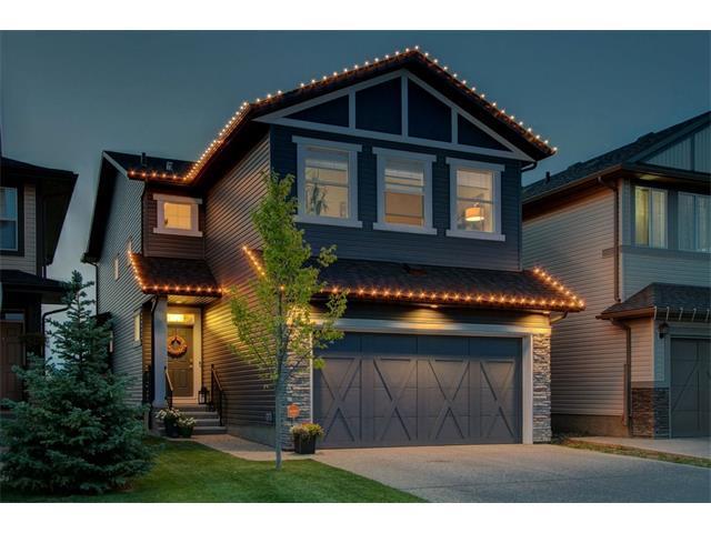 311 Chaparral Valley Way SE, Calgary, AB T2X 0Y2 (#C4133982) :: Tonkinson Real Estate Team