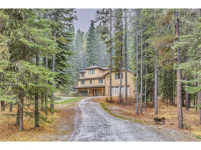 345 Wild Rose Close, Rural Rocky View County, AB T0L 0K0 (#C4141635) :: Canmore & Banff