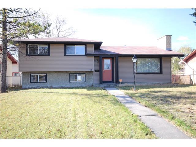 715 52 Street NE, Calgary, AB T2A 2N5 (#C4142084) :: Tonkinson Real Estate Team