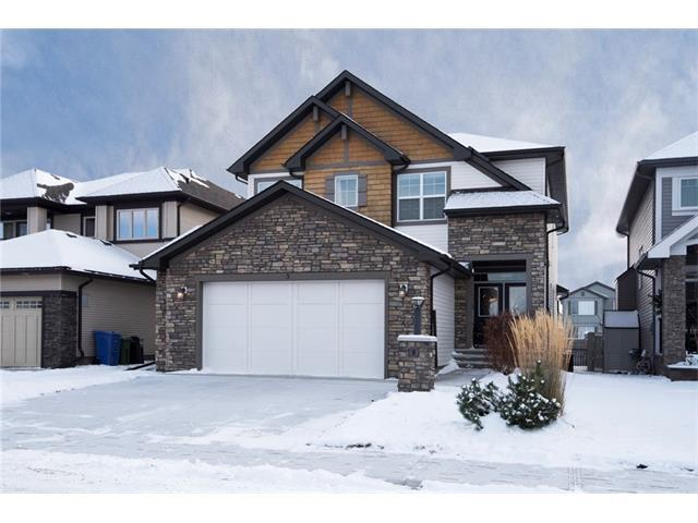 5 Cimarron Springs Court, Okotoks, AB T1S 0M1 (#C4145375) :: The Cliff Stevenson Group