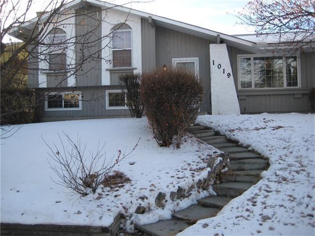 1019 Lake Arrow Way SE, Calgary, AB T2J 3C2 (#C4145832) :: Redline Real Estate Group Inc