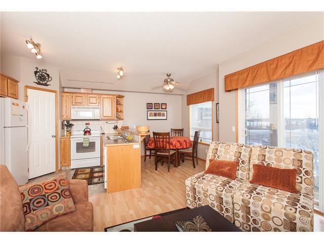 7 Crystal Ridge Cove #204, Strathmore, AB T1P 1W5 (#C4147775) :: Redline Real Estate Group Inc