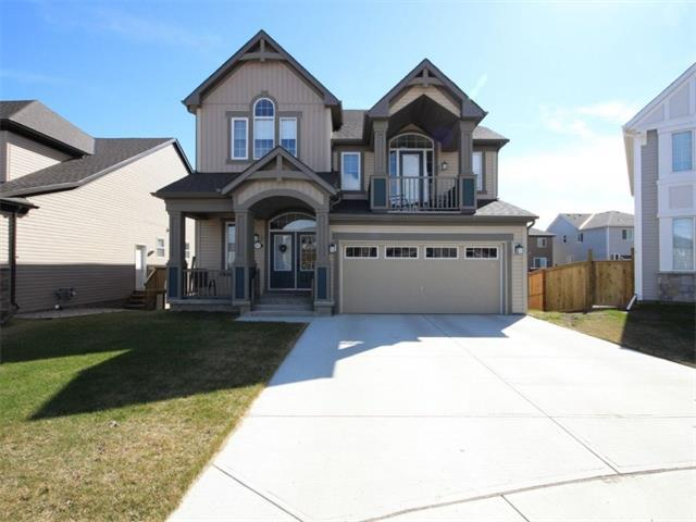 337 Viewpointe Terrace, Chestermere, AB T1X 0T3 (#C4148995) :: The Cliff Stevenson Group