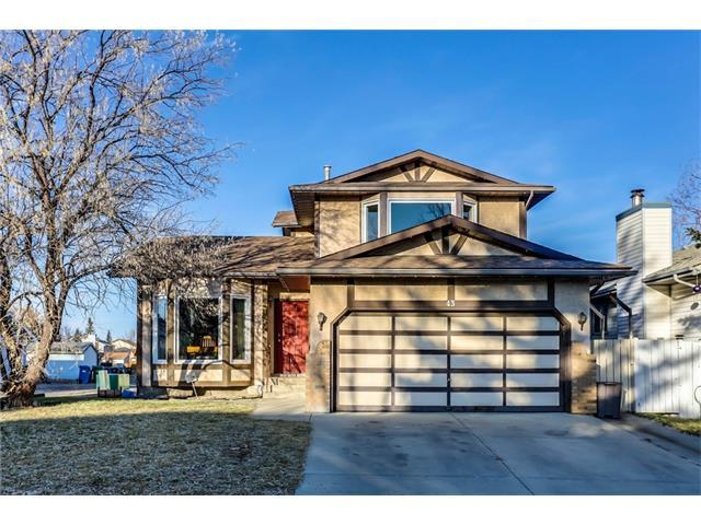 43 Mckinley Road SE, Calgary, AB T2Z 1T7 (#C4149095) :: Tonkinson Real Estate Team