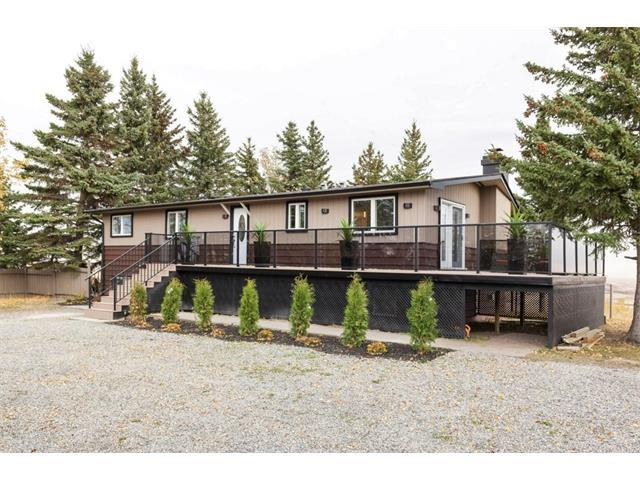 264038 Big Hill Springs Court, Rural Rocky View County, AB T4C 0E5 (#C4150544) :: The Cliff Stevenson Group
