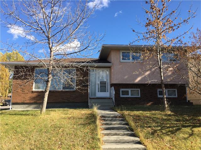 131 Rundlefield Close NE, Calgary, AB T1Y 2W3 (#C4161018) :: The Cliff Stevenson Group