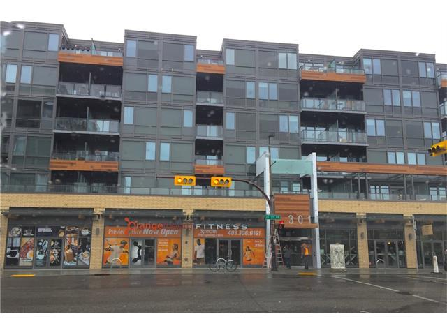 301 10 Street NW #213, Calgary, AB T2N 1V5 (#C4161740) :: Your Calgary Real Estate