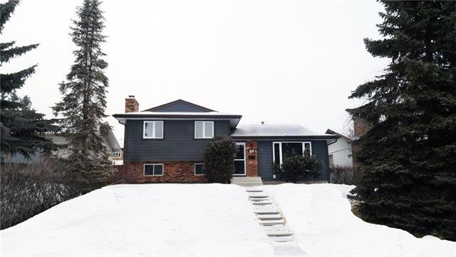 348 Norseman Road NW, Calgary, AB T5K 5M5 (#C4161929) :: Canmore & Banff