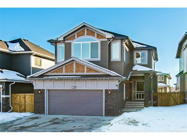 81 Cimarron Springs Circle, Okotoks, AB T1S 0M2 (#C4163177) :: The Cliff Stevenson Group