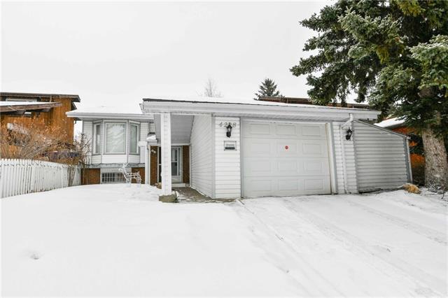 4228 46 Street NE, Calgary, AB T1Y 4K5 (#C4164567) :: The Cliff Stevenson Group