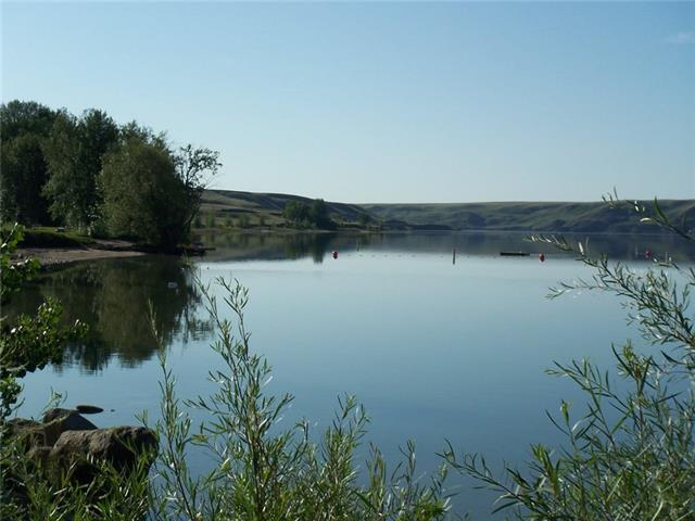 732 Lakeside Drive, Rural Vulcan County, AB T0B 2R0 (#C4165368) :: The Cliff Stevenson Group