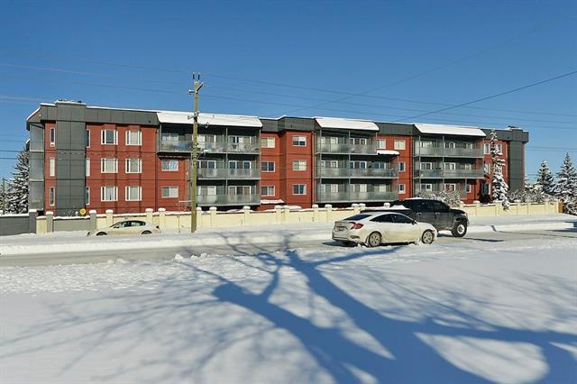 333 Garry Crescent NE #411, Calgary, AB T2K 5W9 (#C4165640) :: The Cliff Stevenson Group