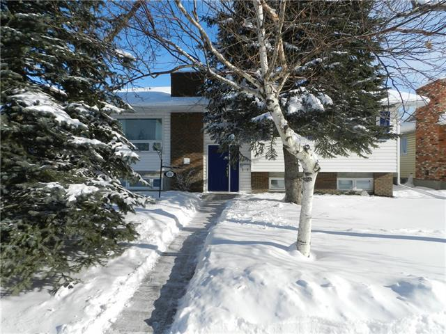 231 Rundleview Drive NE, Calgary, AB T1Y 1H7 (#C4166160) :: The Cliff Stevenson Group