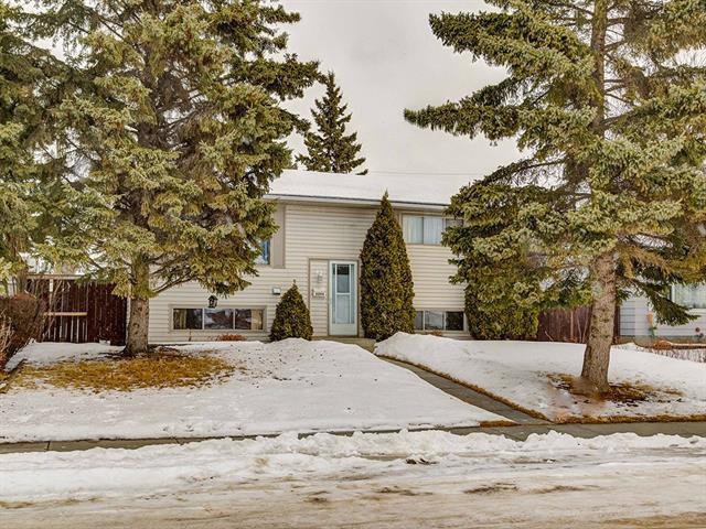 6044 12 Avenue SE, Calgary, AB T2A 0J1 (#C4166290) :: Canmore & Banff