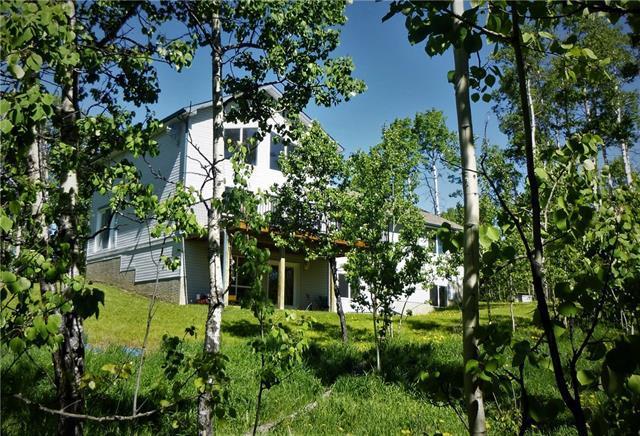 146114 288 Street W, Rural Foothills M.D., AB T0L 1W0 (#C4166550) :: The Cliff Stevenson Group