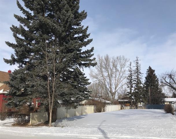 120 2 Avenue SE, High River, AB T1V 1G6 (#C4166980) :: Canmore & Banff