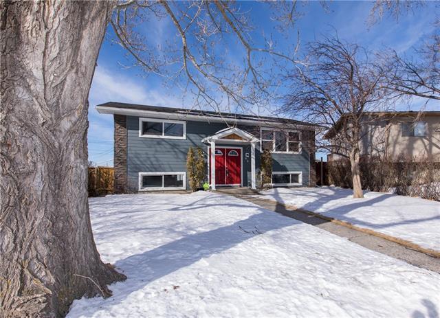 68 Van Horne Crescent NE, Calgary, AB T2E 6H1 (#C4168073) :: Canmore & Banff