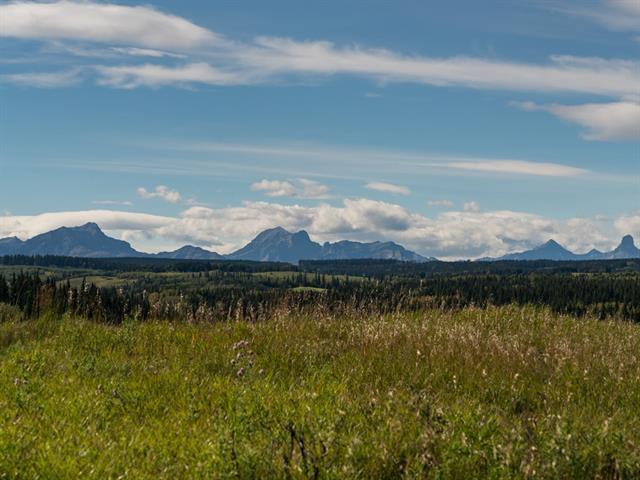 12 Carraig Ridge, Rural Bighorn M.D., AB T0L 1N0 (#C4170979) :: Canmore & Banff