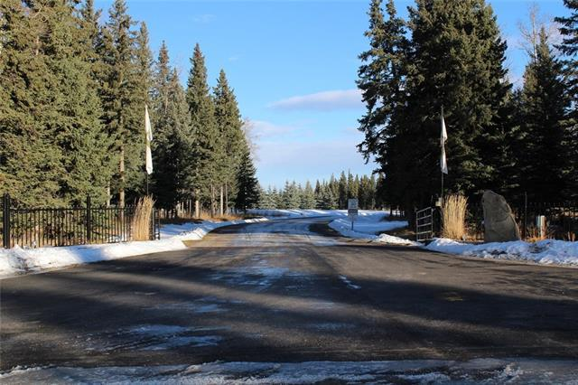 32351 Range Rd 55 Sundre, Rural Mountain View County, AB T0M 1X0 (#C4171180) :: Canmore & Banff